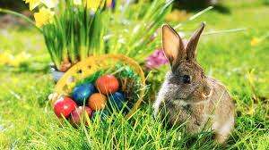 Easter bunny II
